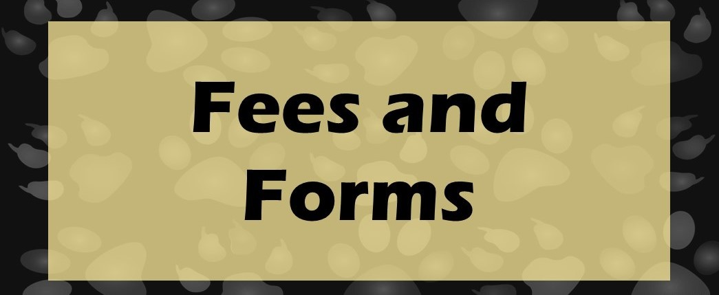 Fees & Permission Forms